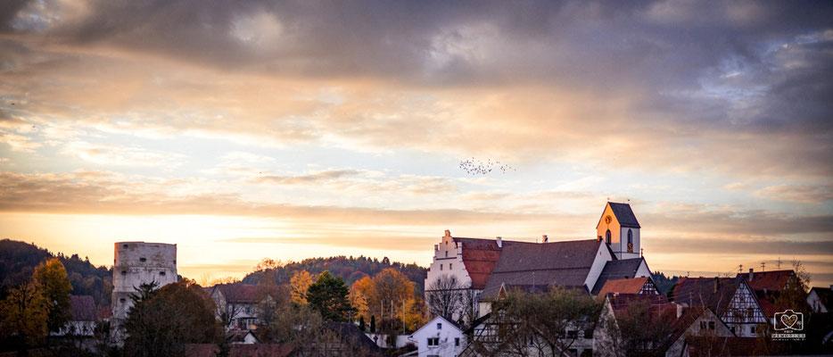 Vogelschwarm im Spätherbst über Trochtelfingen