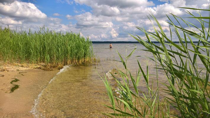Bärwalder See