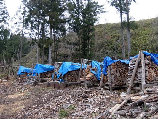 山の薪集荷状況です。