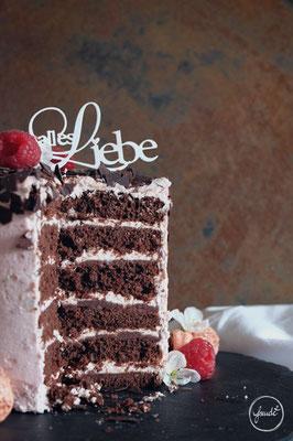 Prächtiges Himbeer Schokoladen Törtchen | Freude²