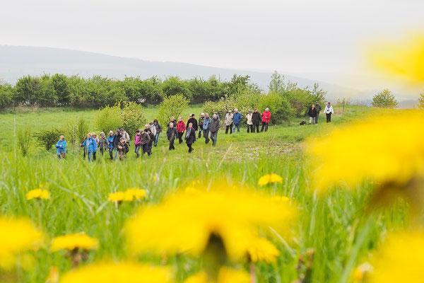Bergab - auf dem Weg zum Hirschberg