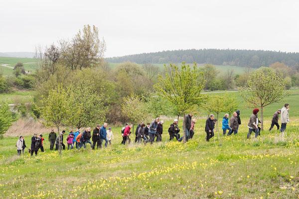 Bergauf entlang der Streuobstwiese - der Backenberg