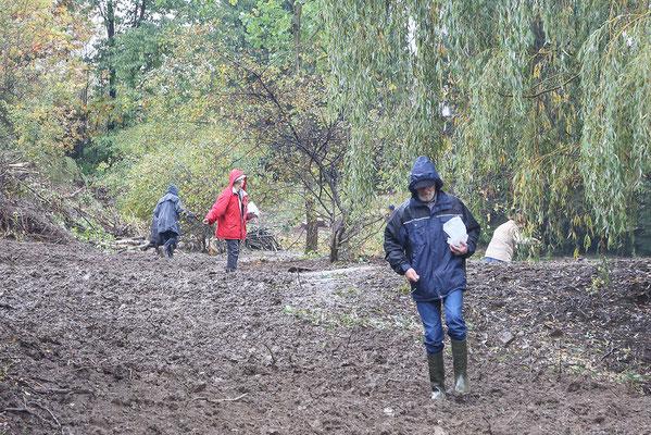 Nieselregen - das hält die Naturfreunde nicht ab, die Einsaat durchzuführen.