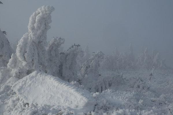 Auf dem Brocken hat der Winter Einzug gehalten.