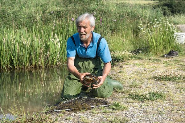 Nach 3 Stunden Gucken und Warten konnte die Schildkröte eingefangen werden. Foto: Regine Schulz