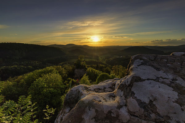 Burgruine Drachenfels Pfälzerwald