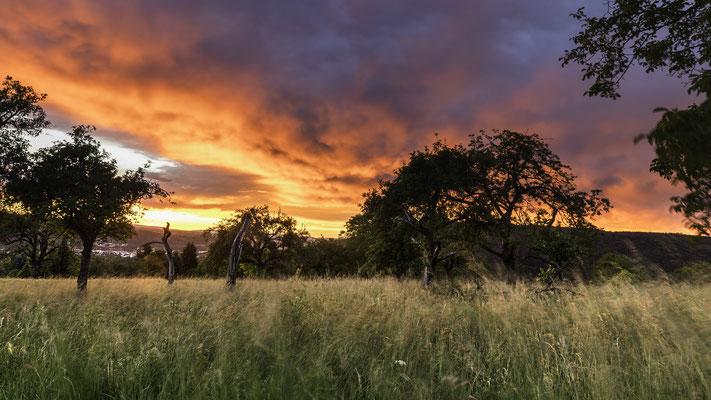 Sonnenuntergang über Lahnstein