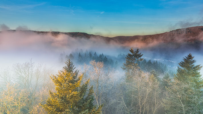 Nebel über der Mosel bei Zell