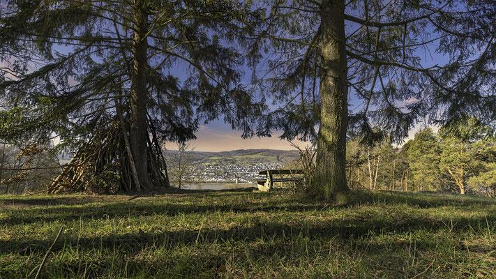 Lahnsteiner Blick nach Rhens