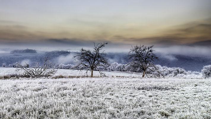 Frostiger Morgen auf dem Bleidenberg/ Mosel