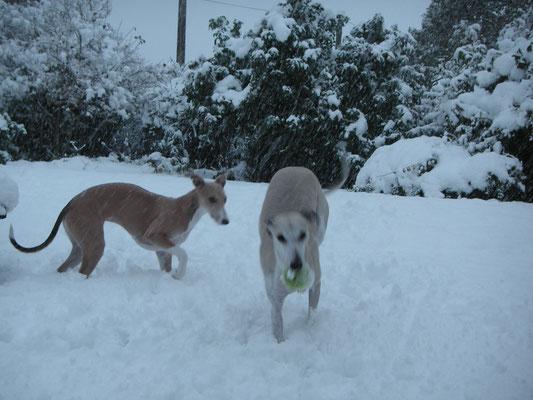 Il y a 3 ans quelques jeux dans la neige