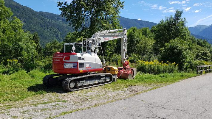 Geogitter Böschungsaufbau Seeboden am Millstätter See mit 15to Bagger TB 2150R