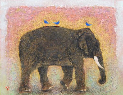 2011年 象に小鳥 P10号
