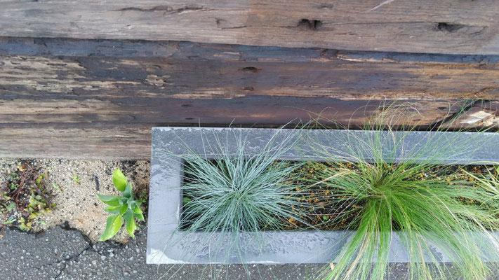 色々な四角い花壇