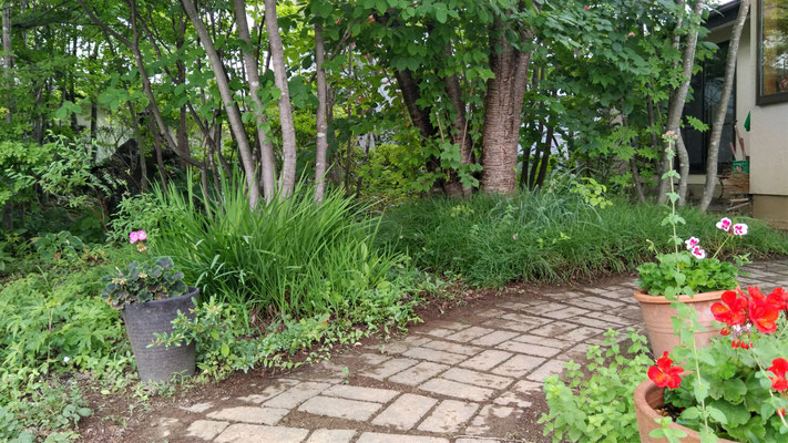 S様邸のかわいい庭