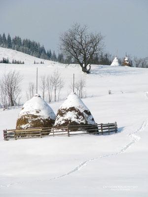 Carpathian Mountains, Verkhovyna, Ukraine