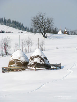 Carpathian Mountains, Verkhovyna, Ukraine