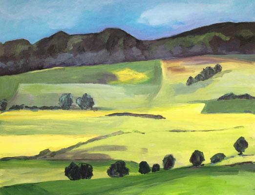 Lämershagen - Grüne Felder;2012, Mischtechnik auf Leinwand, 100 x 130 cm