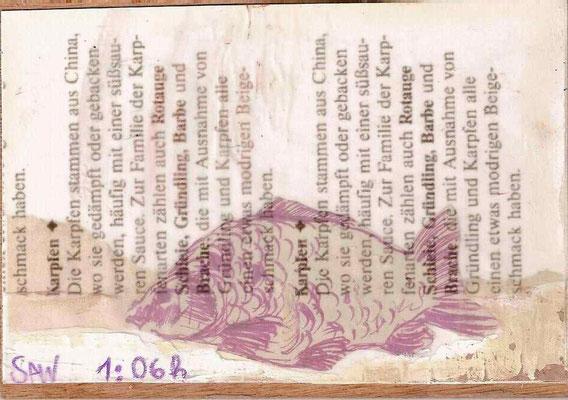 Karpfen 1:06 h, 2008, 12 x 17 cm, (gerahmt 20,6 x 26,5 cm)