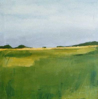 Landschaft 006, 2005, Mischtechnik auf Leinwand, 50 x 50 cm