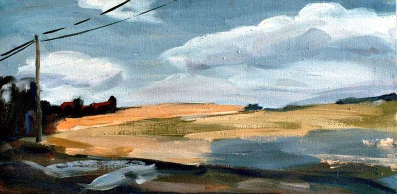 Landschaft 001, 2005, Mischtechnik auf Leinwand, 40 x 80 cm