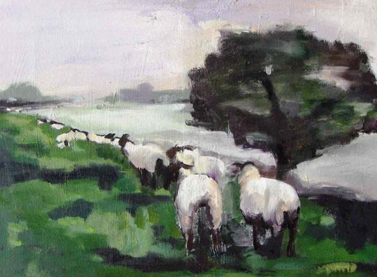 Schafe am See, 2010, Mischtechnik auf Holz, 30 x 40 cm