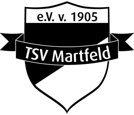 TSV Martfeld Fußball Saisonvorbereitung Blender