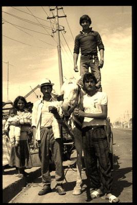 Damals schienen mir die Roma die einzige Bevölkerungsgruppe zu sein, die nicht unter dem Ceaucescu-Regime litt. Ich glaube, die Roma sind immun gegen Depressionen.