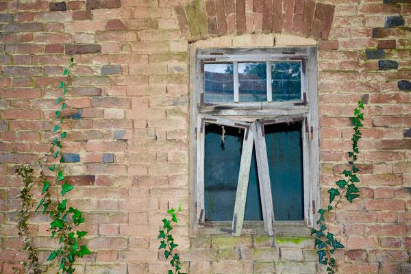 Prozor kroz koji sam ponekad skotjil kad me djed htel odgajat z njegvim štapom :)