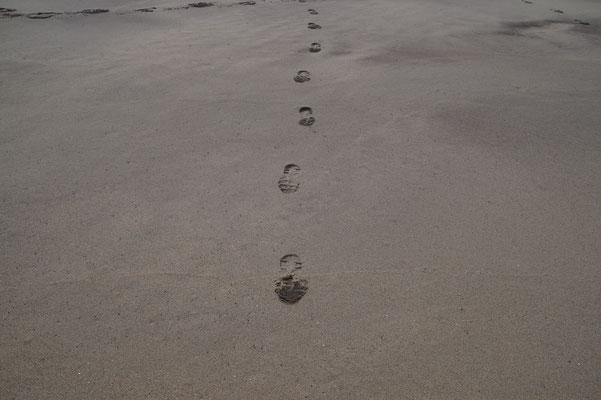 Der Weg entsteht beim Gehen