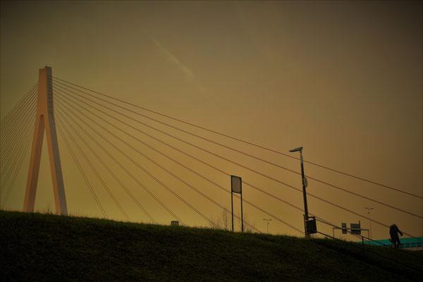 28.01...Deichstadt-Sonnenuntergang