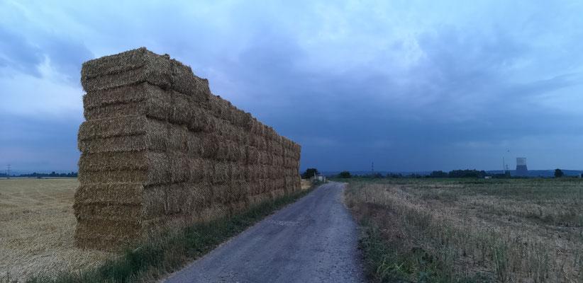 21.07...NR-Engerser Feld
