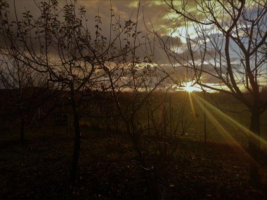 04.12...NR-Sunrise