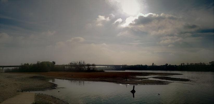 25.10...A48-Niedrigwasser im Rhein