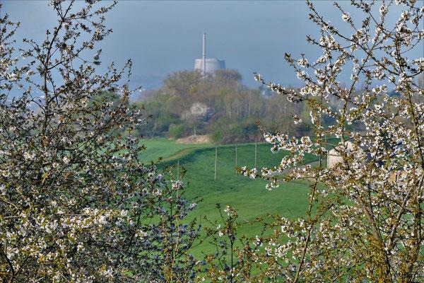 08.04....Letzte Frühling für AKW