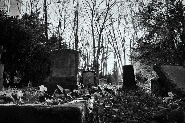15.03...NR-Alter Friedhof