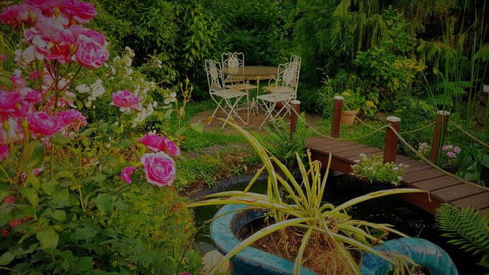 08.06...NR-Im Garten