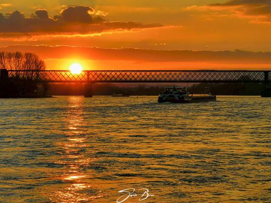 "27.02.""Saharastaub Sunset in Engers""!"