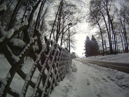 15.01.2017  Rengsdorf