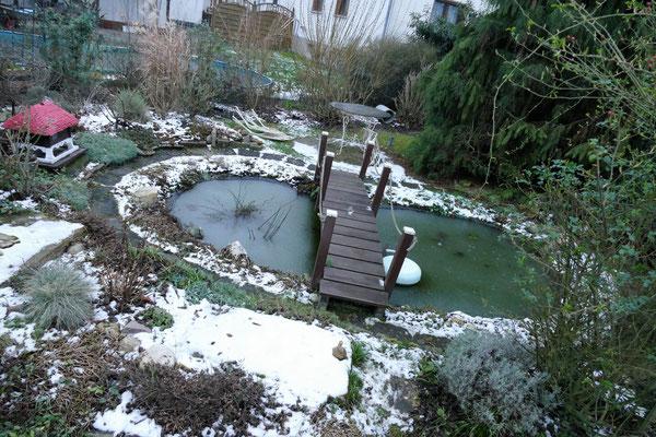 07.02...NR-Im Garten