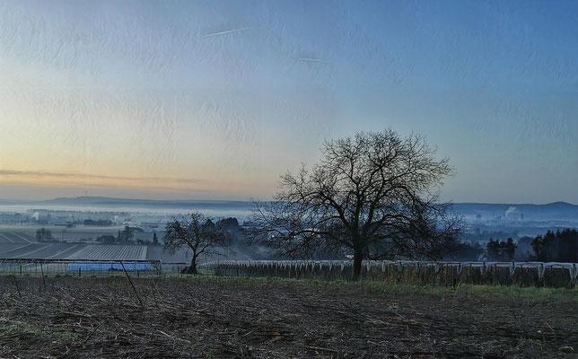 15.01....Neuwied-Sonnenaufgang