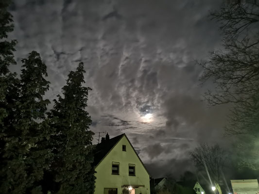 12.01...Vollmond in Deichstadt !