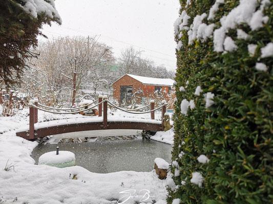 """26.01.""""...es schneit""""!"""