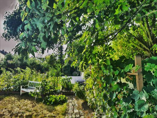 06.08...Nachmittag im Garten !