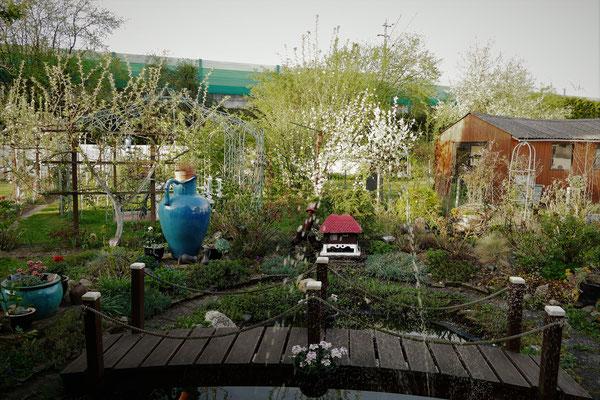 18.04...NR-im Garten