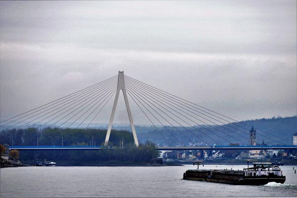 26.11...NR-Rhein für Schiffe frei !