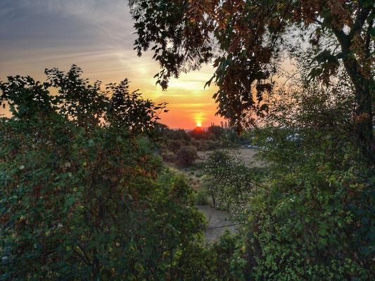 29.08..NR-Block Sunrise