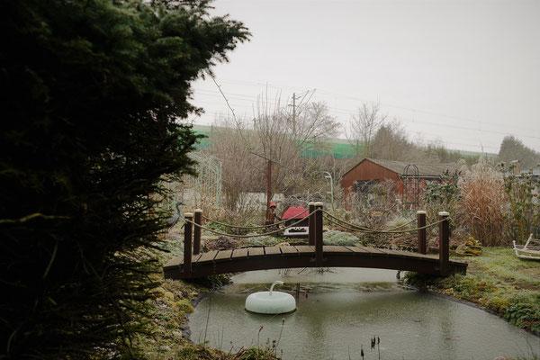 19.02...NR-Winter im Garten