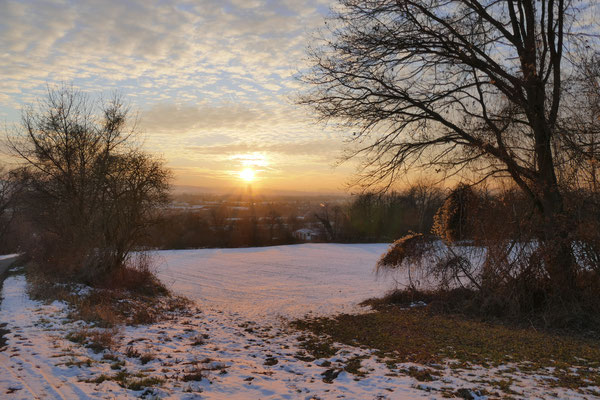 04.01.2017 NR-Heimbach-Weis