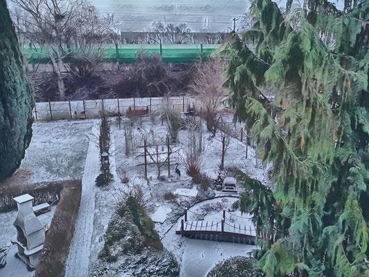 27.01...NR-Winter im Garten
